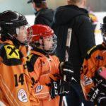 BEHV Nachwuchsauswahl beim Pantherscup